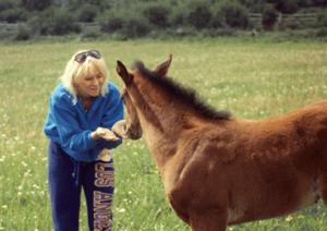 lisa-pony cropped